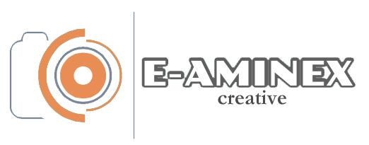 E-AMINEX creative